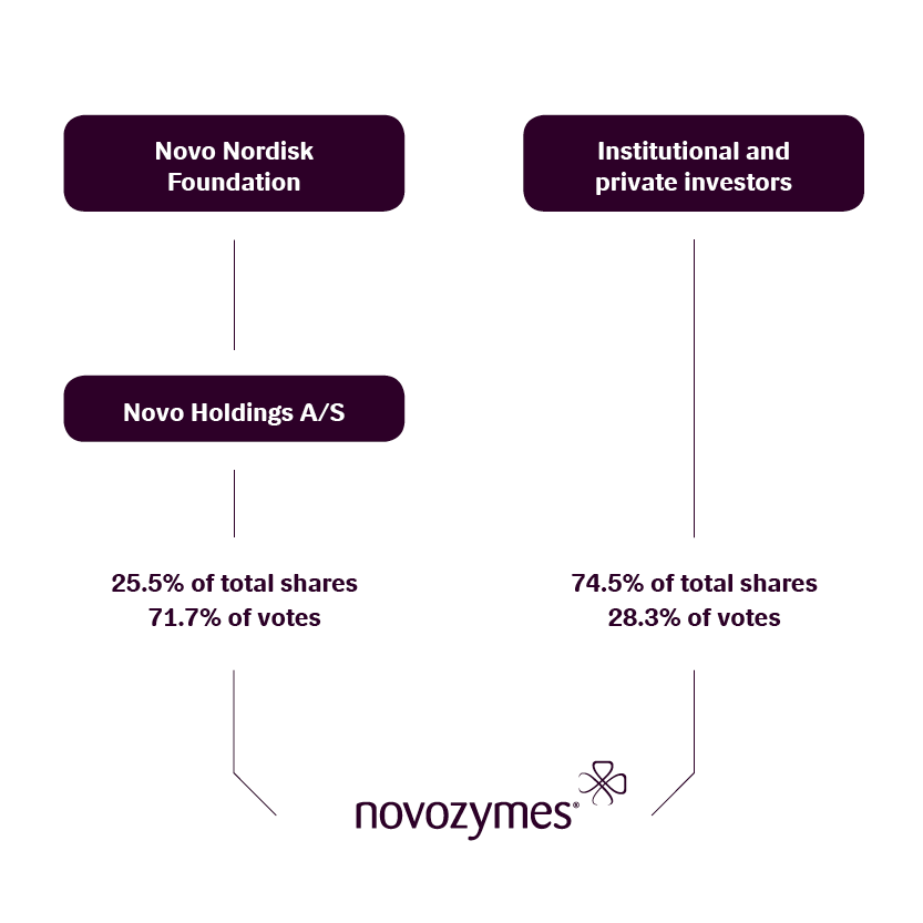 Equity Research Analyst Objectives: The Novozymes Stock